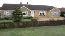 3 bedroom Detached Bungalow in Thorney Road, Newborough...
