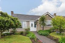 Herne Detached Bungalow to rent