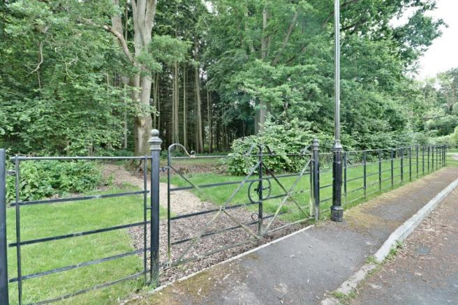 Entrance To Wooded Copse