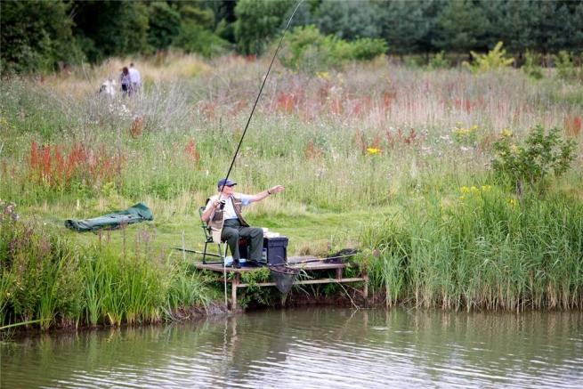 TYDD FISHING