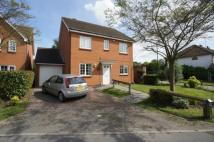 Detached home for sale in Beech Avenue, Swanley...