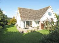 Detached Bungalow in Carhampton