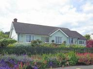 Detached Bungalow in Minehead
