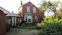 Balmoral Road house