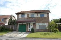 4 bedroom house for sale in Greencroft, Penwortham...