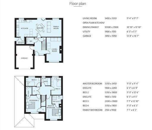 Plan (Large)