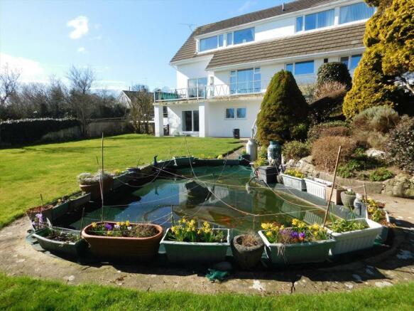 Garden & Fish Pond