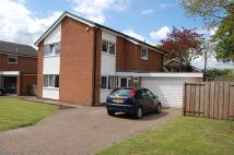 4 bed house in Meadowcroft, Euxton...