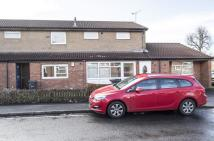 property to rent in Albion Street, Oldbury