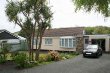 Little Dinas Detached Bungalow for sale