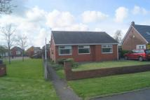 Bungalow for sale in Leyland Lane, Leyland