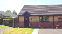 Bungalow for sale in Kingswood Road, Leyland...