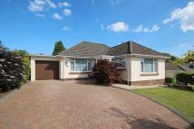 Detached Bungalow for sale in Merryland Close, Preston...