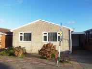 Bungalow to rent in White Close, Preston...