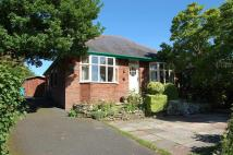 Bungalow for sale in Hollins Lane, Forton...