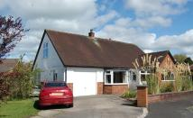 Bungalow in Cedar Close, Garstang...