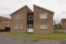 1 bed Studio flat to rent in Flat 3 15 Sycamore Road...