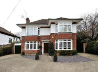 4 bedroom Detached home for sale in First Avenue, Worthing...
