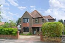 Detached property in Shirley Drive, Worthing...