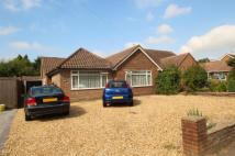 Bungalow for sale in Findon Road...