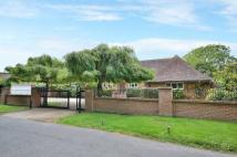 Bungalow for sale in North Drive, Angmering...