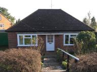 3 bed Detached Bungalow to rent in 3 bedroom Detached...