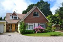 Detached house to rent in Storrington, West Sussex