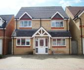 Detached house to rent in Wensum Road, Stevenage...