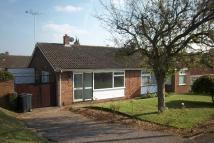 Bungalow to rent in HAZELMERE ROAD...