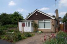 Detached Bungalow in Swann Dale Close...
