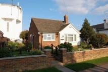 Detached Bungalow for sale in Northampton Road...