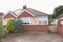 Semi-Detached Bungalow for sale in St Davids Close...