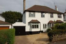 3 bed semi detached home for sale in Beech Grove, Boothville...
