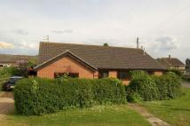 Detached Bungalow for sale in Bretts Lane, Roade...