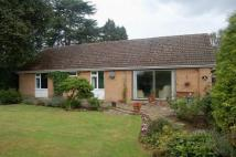 3 bed Detached Bungalow in Abington Park Crescent...