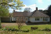 Detached Bungalow for sale in Wellingborough Road...