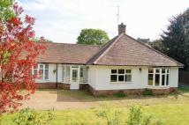 2 bedroom Detached Bungalow in Wellingborough Road...