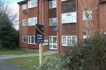 Studio apartment to rent in St Peters Close ...