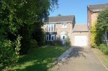 4 bed Link Detached House in Home Farm Close...
