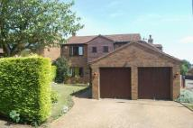 Detached house for sale in Sallow Avenue, Berrydale...