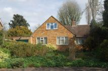 4 bedroom Detached Bungalow for sale in Chantry Close...