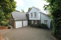 Detached property to rent in Hanger Hill, Weybridge...