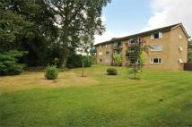2 bed Flat to rent in Oatlands Avenue...