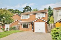 Detached property to rent in Princess Marys Road...