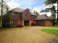 5 bedroom Detached property to rent in Littleworth Lane, Esher...