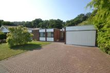 Detached Bungalow for sale in Stony Wood, Harlow