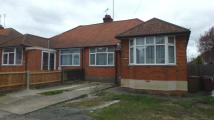 Shafto Road Semi-Detached Bungalow to rent