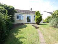 3 bed Detached Bungalow for sale in COLCHESTER ROAD...