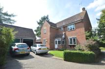 Detached property in TIDINGS HILL, Halstead...