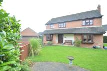 4 bedroom Detached house in Mitchell Avenue...